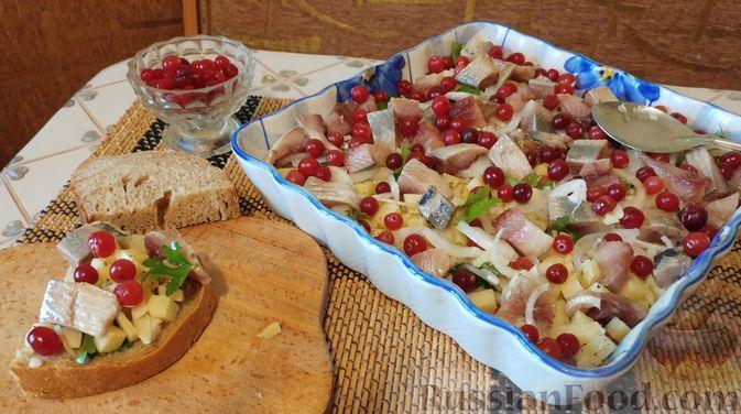 Фото к рецепту: Закусочный салат с селёдкой, картофелем и клюквой