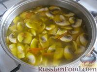 Фото приготовления рецепта: Суп картофельный со свежими грибами - шаг №10