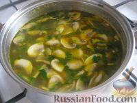 Фото приготовления рецепта: Суп картофельный со свежими грибами - шаг №12