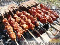 Фото к рецепту: Шашлык из свинины, маринованный в томате