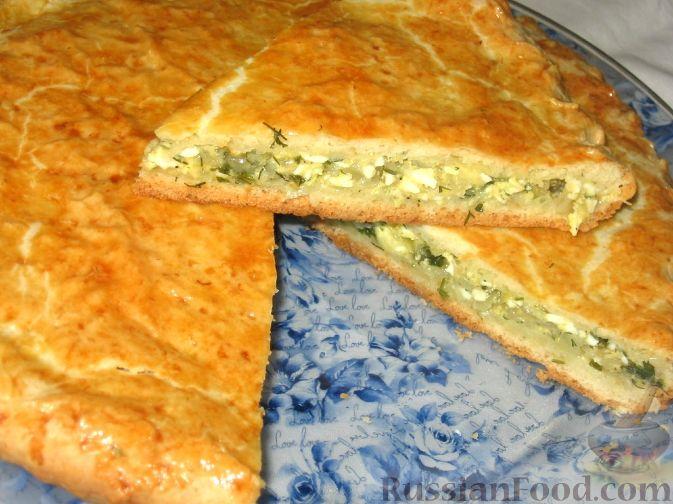 Луковый пирог рецепт с фото пошагово в духовке