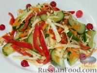 """Фото к рецепту: Салат из капусты и овощей """"Красотка"""""""
