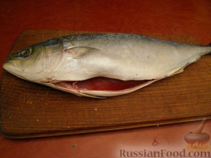 тунец рецепты приготовления в духовке целиком