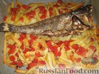 Фото к рецепту: Морской окунь, запеченный с картофелем