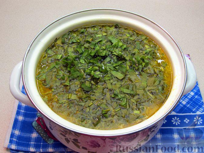 Фото приготовления рецепта: Щи из свежей капусты с говядиной и щавелем - шаг №13