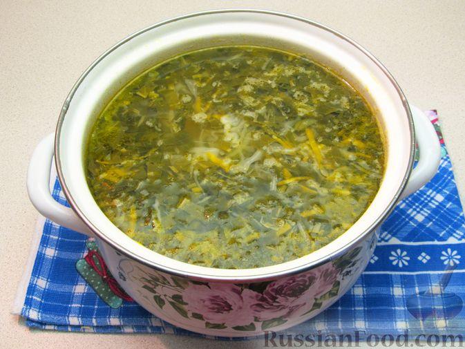 Фото приготовления рецепта: Щи из свежей капусты с говядиной и щавелем - шаг №14