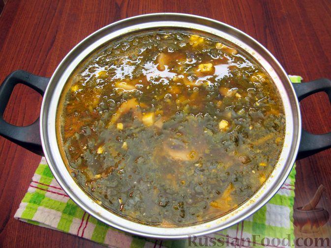 Фото приготовления рецепта: Куриный суп со щавелем и шампиньонами - шаг №19