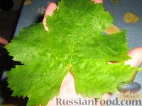 Фото приготовления рецепта: Долма (голубцы в виноградных листьях) - шаг №2