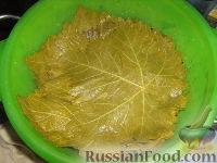 Фото приготовления рецепта: Долма (голубцы в виноградных листьях) - шаг №4
