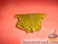 Фото приготовления рецепта: Долма (голубцы в виноградных листьях) - шаг №15