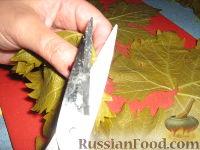 Фото приготовления рецепта: Долма (голубцы в виноградных листьях) - шаг №10