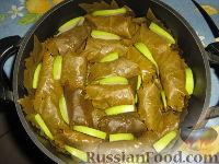 Фото приготовления рецепта: Долма (голубцы в виноградных листьях) - шаг №20