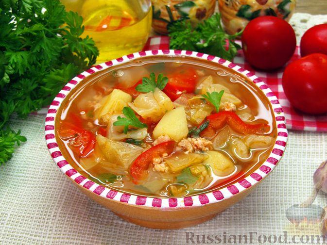 Фото к рецепту: Суп «Чехословацкий»