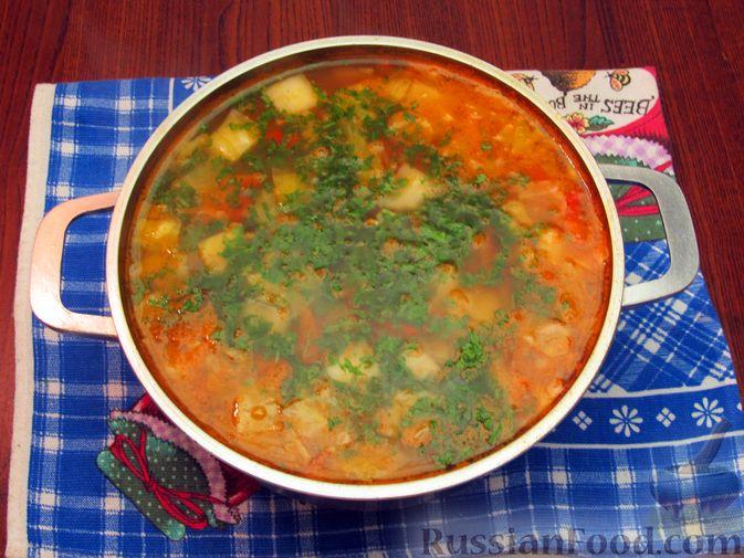 Фото приготовления рецепта: Суп «Чехословацкий» - шаг №19