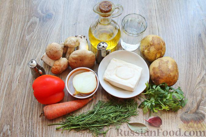 Фото приготовления рецепта: Суп с белыми грибами и плавленым сыром - шаг №1