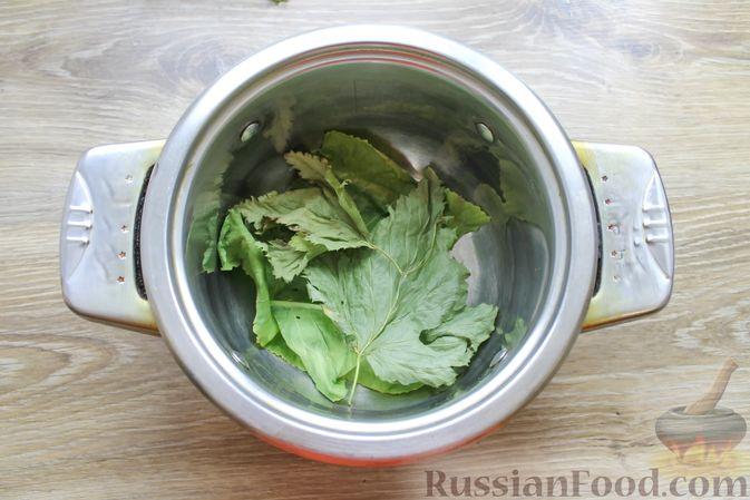 Фото приготовления рецепта: Солёные волнушки (на зиму) - шаг №5