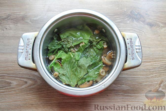 Фото приготовления рецепта: Солёные волнушки (на зиму) - шаг №11