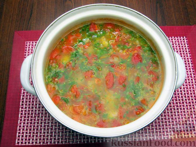 Фото приготовления рецепта: Суп из свинины с пшеном и помидорами - шаг №18