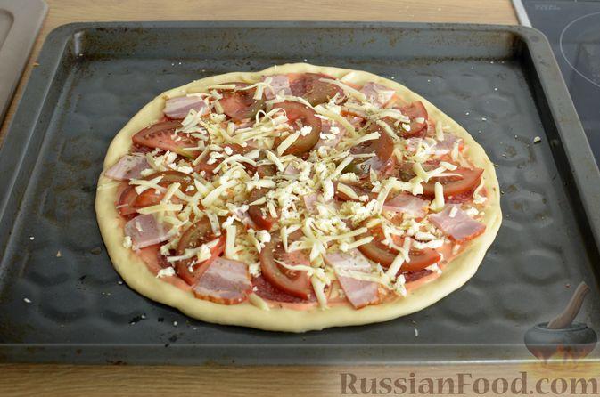 Фото приготовления рецепта: Пицца из дрожжевого теста длительного брожения, с копчёностями и помидорами - шаг №16