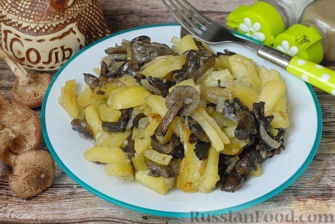 Фото к рецепту: Жареная картошка с опятами