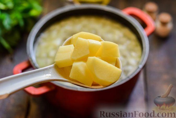 Фото приготовления рецепта: Суп с жареной свининой и помидорами - шаг №9