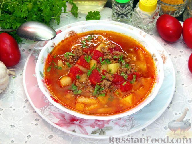 Фото приготовления рецепта: Томатный суп с мясным фаршем и яблоком - шаг №16