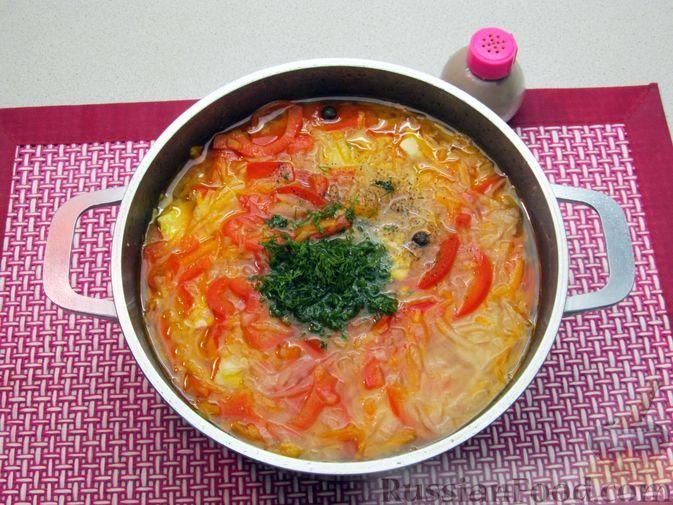 Фото приготовления рецепта: Щи из свежей капусты с курицей, сладким перцем и молоком - шаг №15