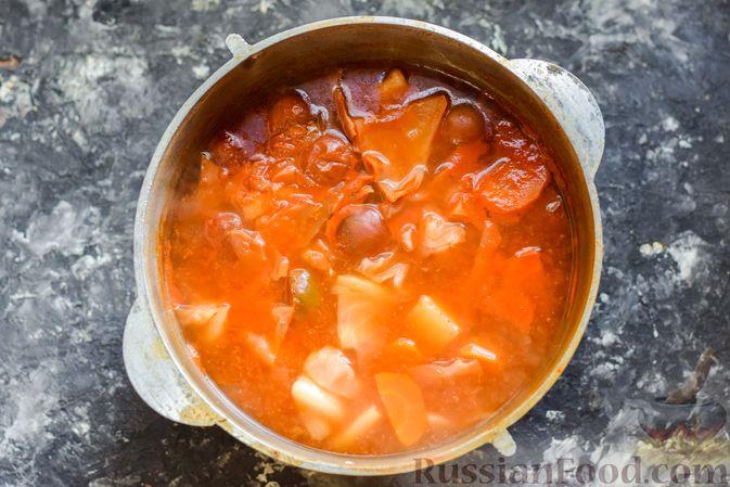Фото приготовления рецепта: Щи из свежей капусты со свининой и помидорами - шаг №12