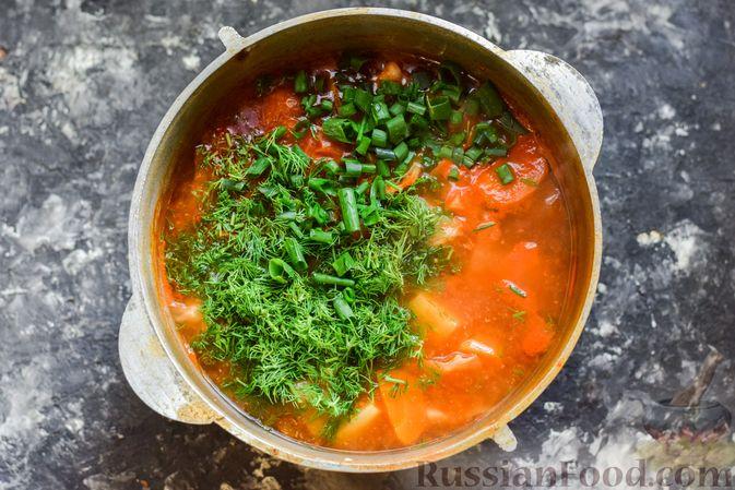 Фото приготовления рецепта: Щи из свежей капусты со свининой и помидорами - шаг №13