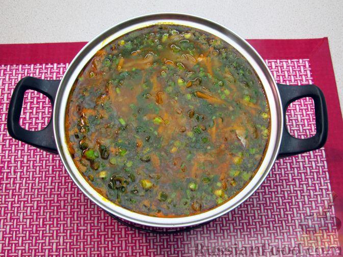 Фото приготовления рецепта: Щи с консервированной рыбой и томатной пастой - шаг №16