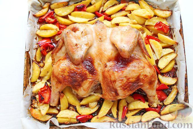 Фото приготовления рецепта: Курица, запечённая с картофелем, сладким перцем, вином и розмарином - шаг №12