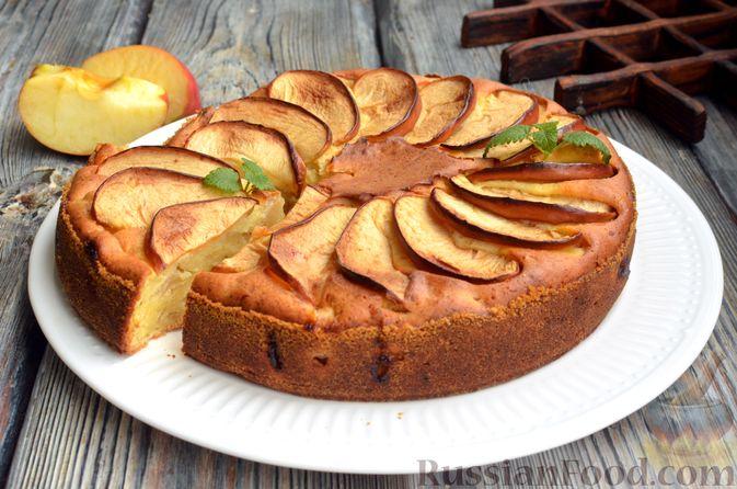 Фото к рецепту: Творожная шарлотка  с яблоками