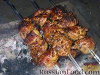 Фото к рецепту: Шашлык из курицы