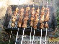 Фото к рецепту: Шашлык из свинины с чесноком
