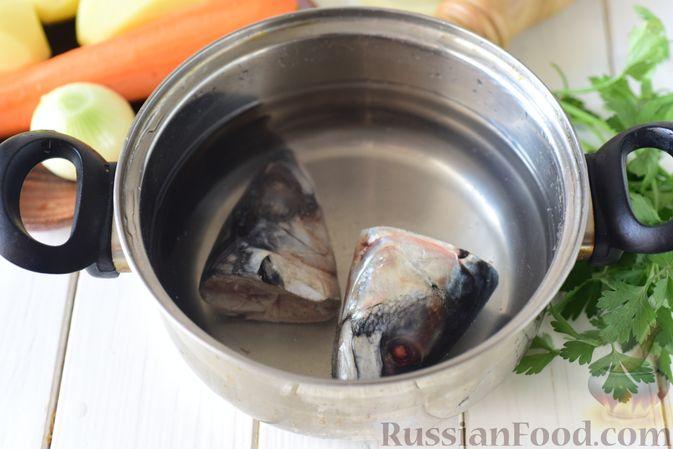 Фото приготовления рецепта: Уха из голов скумбрии - шаг №2