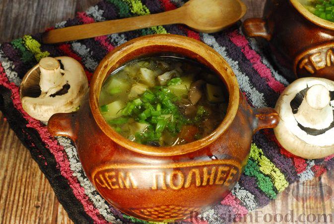 Фото приготовления рецепта: Грибной суп с сельдереем (в горшочках) - шаг №13