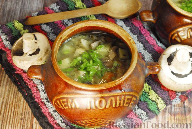 Фото к рецепту: Грибной суп с сельдереем (в горшочках)