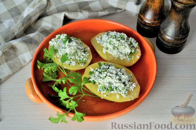 Фото к рецепту: Отварной картофель с творогом, зеленью и чесноком
