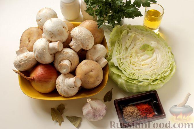 Фото приготовления рецепта: Капуста, тушенная с картошкой и грибами - шаг №1
