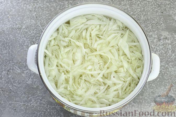 Фото приготовления рецепта: Борщ сибирский - шаг №3