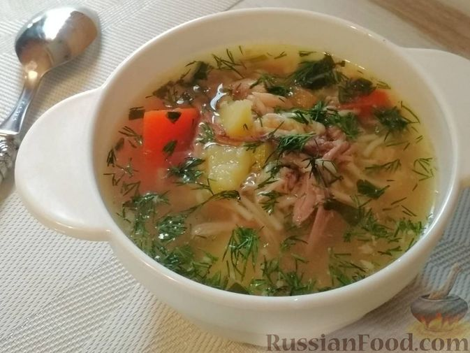 Фото к рецепту: Суп из птицы с вермишелью