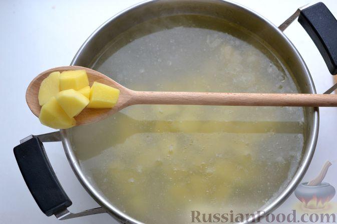 Фото приготовления рецепта: Борщ с курицей и квашеной капустой - шаг №15