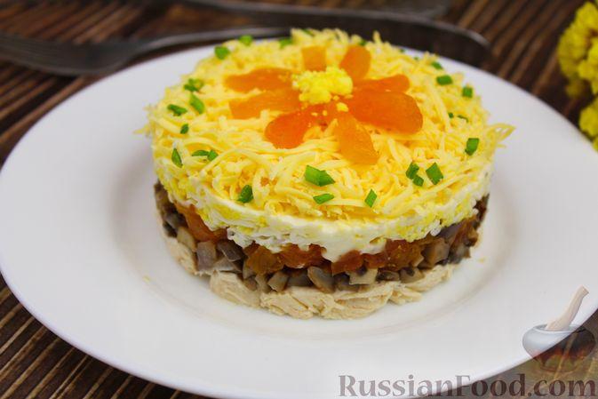 Фото к рецепту: Слоёный салат с курицей, шампиньонами, курагой и сыром