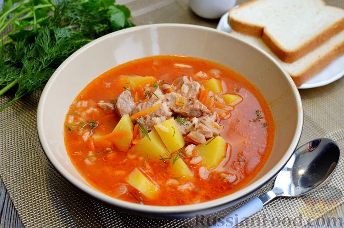 Фото к рецепту: Томатный суп со свининой и рисом