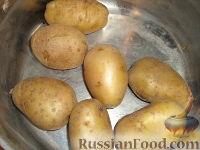 """Фото приготовления рецепта: Картофельный """"Гато"""" (запеканка) - шаг №1"""