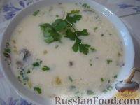 Фото к рецепту: Суп сырный с шампиньонами