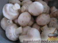 Фото приготовления рецепта: Жареные шампиньоны с луком - шаг №2