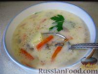 Фото к рецепту: Суп с рисом, шампиньонами и плавленым сыром