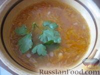 Фото к рецепту: Щи из квашеной капусты с рисом