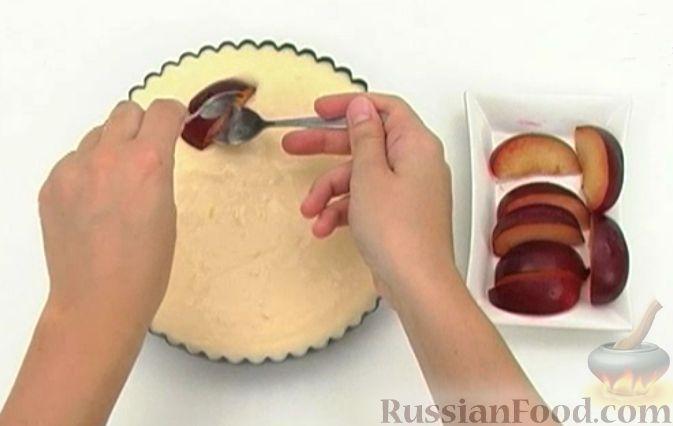 Фото приготовления рецепта: Чизкейк творожный со сливами - шаг №10